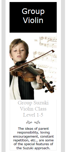Group Violin